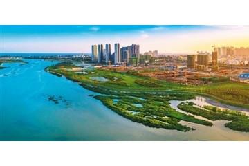 养海护沙滩生态金不换(生态治理的中国奇迹(19))